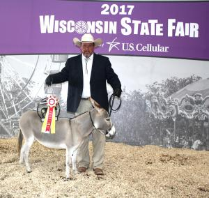 2017 Wisconsin State Fair