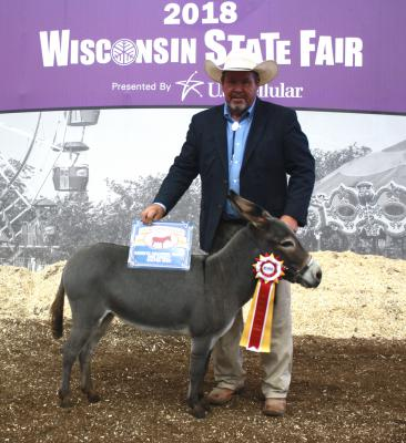 2018 Wisconsin State Fair